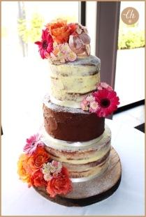 Laura's Elephant Cake