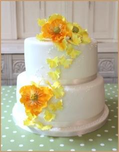 Nicky's Butterfly Cake